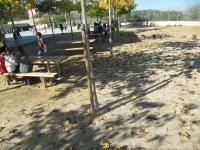 Pla vinyes 2015 reparacio reg (23)