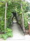 jardin des enfants (8)