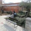 Neixen les primeres preguntes. Com formar un jardí amb convivència amb els infants, famílies i les necessitats organitzatives de l'escola?