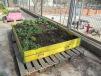 Calaixos plens de senzillesa que podrien estar a molts llocs on cultiu, joc i jardí són possibles.