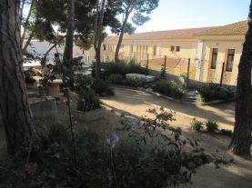 Escola pública La Vila Palamos (8)