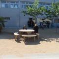 escola LolaAnglada Badalona (13)
