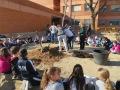 Escola JM Ciurana (3)